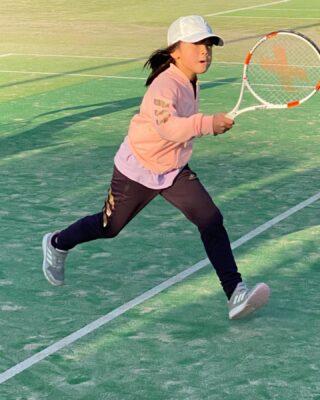 青葉 公園 テニス コート